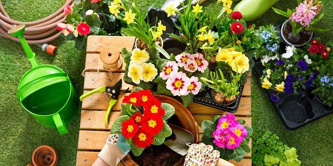 Zahrada v dubnu: Co je třeba udělat na zahradě