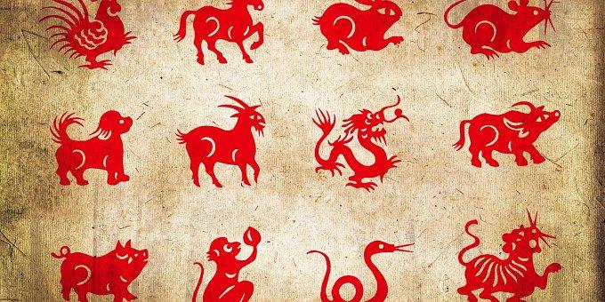 Horoskop na týden: Vepři vyřeší letitý problém, Hadi, pozor na peníze