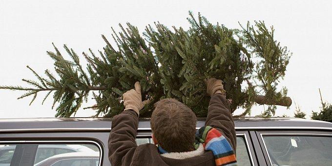 Vánoční stromky na kapotách aut jsou časovanou bombou