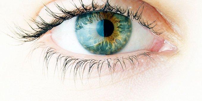 Řeč těla: Tvar očí odhalí vaši povahu! Máte kulaté, nebo kočičí?