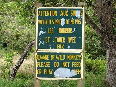 Krmit makaky zakázáno