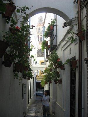 Calle de las Flores + Věž katedrály