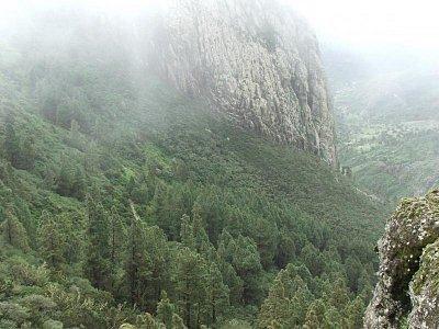 Stálé vlhko a mlhy na Gomeře - Hory v centru ostrova jsou pokryty hodně mraky, ale v těch se právě daří úžasným mechům a lišejníkům v pralese. (nahrál: Kateřina Chamoutová)