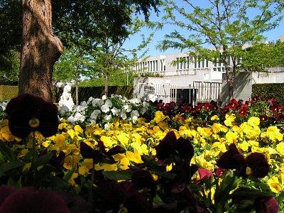 Zahrada v sousedství parlamentu (nahrál: admin)