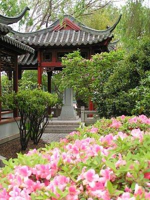 Čínská zahrada (nahrál: admin)