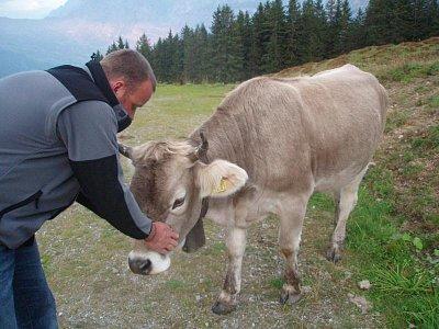 Alpy - Tak takové kravičky se pasou vysoko v horách (září Grindelwald) (nahrál: monika)