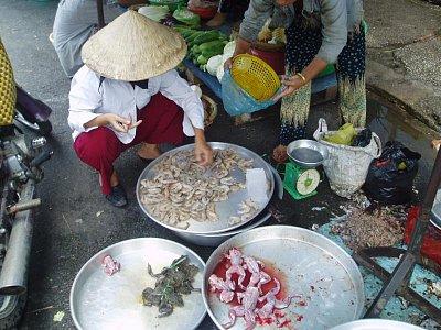 Ho Či Minovo Město-žáby (nahrál: admin)