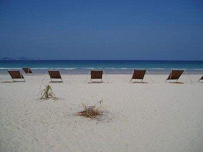 Jungle Beach (nahrál: admin)