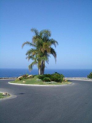 Tenerife - Krásný kruháč v zahradě v Abamě (nahrál: mikyky)
