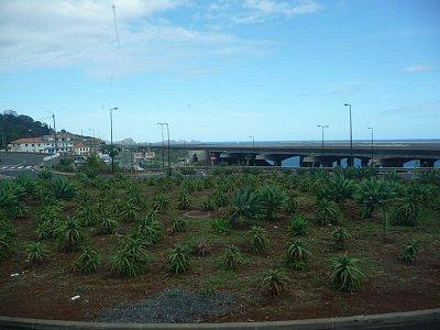 Mezinárodní letiště Aeroporto de Santa Cataria - Pohled na přistávací plochu (nahrál: jannak)