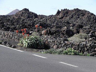 Parque Nacional  de Timanfaya -  silnice douci k Národnímu parku   Ostrov Lanzarote dovolena leden09 (nahrál: Edita)