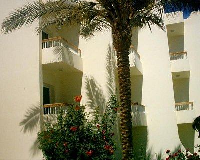 Balkon - Za větru nám palma mávala do pokoje (nahrál: marmi)