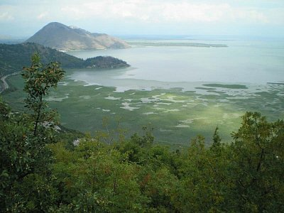 Skadarské jezero 2 (nahrál: Lubomír Klimeš)