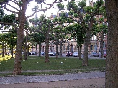 Lund - Náměstí, fantasticky udržované stromy (nahrál: josef Vágner)
