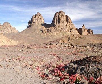 Alzirsko - centralni Sahara 2006