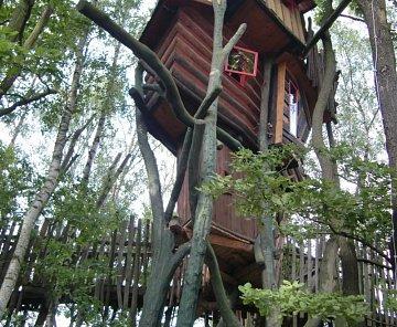 hotel na stromě