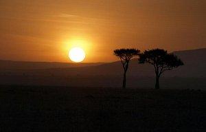 Keňa 2011