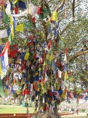 Nepál - Lumbiní a Pókhara