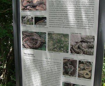 Vodopády Krka-červen 2008