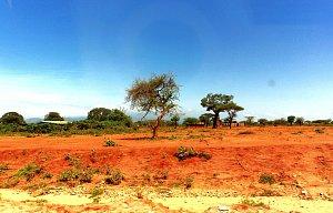 Keňa 2014 - TO NAJ