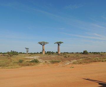 Madagaskar 2017-druhá část