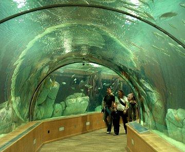 Oceánografické muzeum Valencie