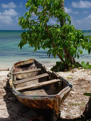 Samaná - Dominikánská republika