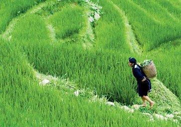 Ochutnejte s námi Vietnam
