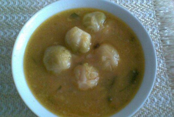dietní polévka