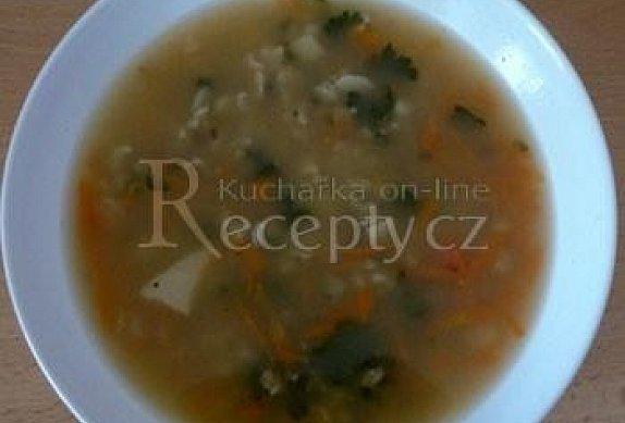 Rychlá vločková polévka