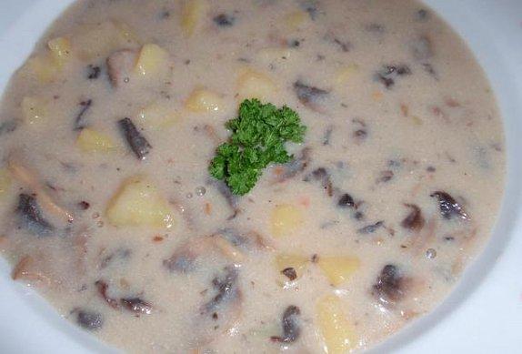 Mléčná žampionová polévka