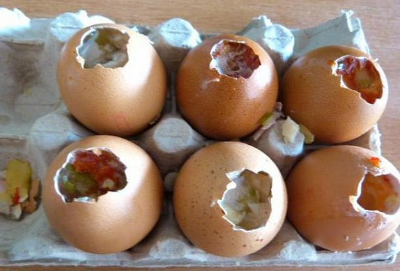Želatinová vajíčka