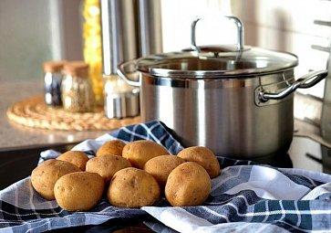 Jak vybrat brambory na vánoční salát?