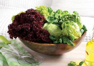 Jarní hit - svěží salátové pokrmy