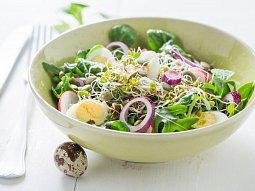 Salát s křepelčím vejcem a klíčky