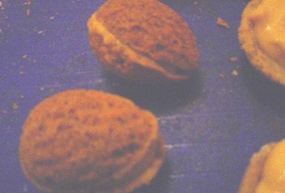 Plněné ořechy IV.