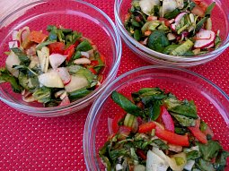 Polníčkový salát se zeleninou