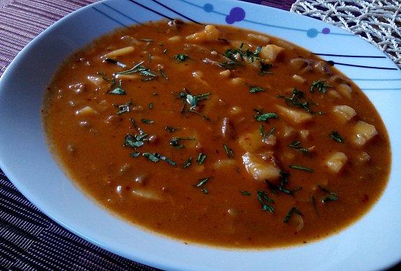 Gulášová polévka s hlívou ústřičnou photo-0