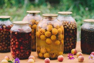 Recept na ovocný kompot – postup přípravy, suroviny a více variant receptu