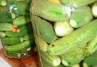 Ruské okurky - rychlokvašky na slano