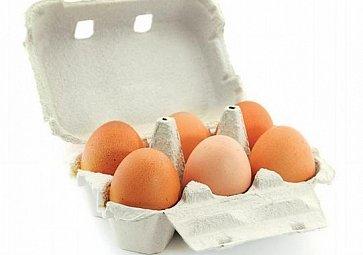 Slepice a jejich vejce