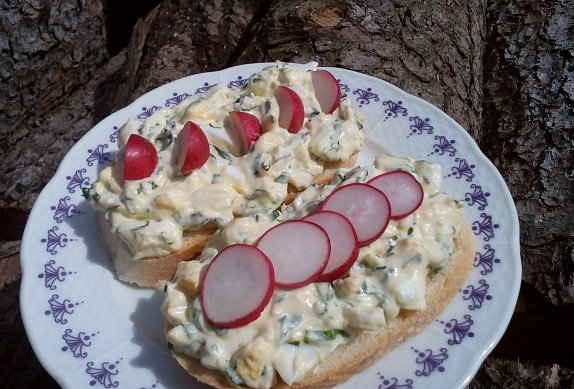 Jemná vajíčková pomazánka / salát s medvědím česnekem