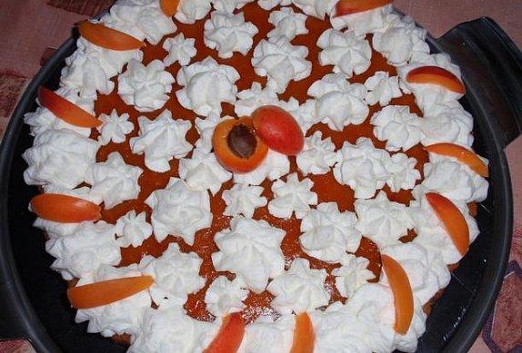 Jednoduchý meruňkový dort (řez)