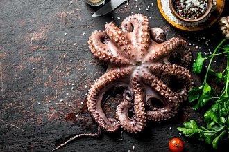 Recepty z chobotniček, kalamár a olihní – postup přípravy, suroviny a více variant receptu