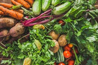 Zeleninové recepty – postup přípravy, suroviny a více variant receptu