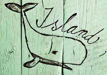 Island - ostrov rybolovu a banánů