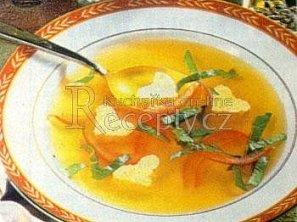 Kuřecí polévka se svítkem