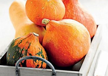 Dýně: Oranžový symbol podzimu
