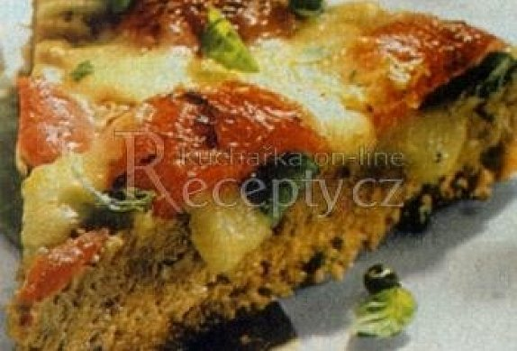 Masový nákyp po španělsku s rajčaty s sýrem