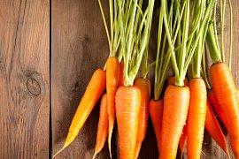 Jak vybrat správnou mrkev?